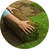 Zakładanie trawnika